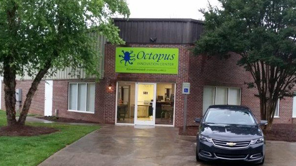 octopus-office